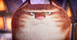 Chystá se filmová adaptace Pratchettova Úžasného Maurice. Dabovat ho bude Hugh Laurie