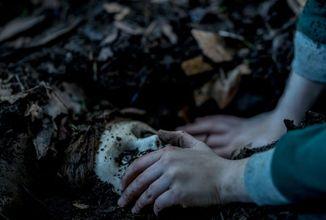 Hororový príbeh The Boy o živej bábike sa vracia v druhom diely