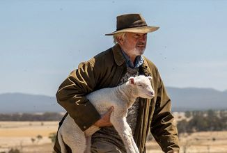 Sam Neill jako chovatel ceněné pokrevní linie ovcí v komediálním dramatu Rams