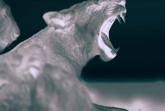 Přichází nový dokument o nočním životě zvířat. Tentokrát v podání Netflixu