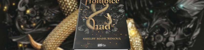 Fantasy podání čarodějnických procesů v románu Holubice a had
