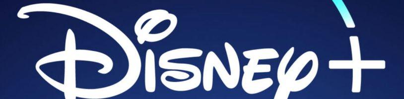 Na Disney+ si ještě počkáme