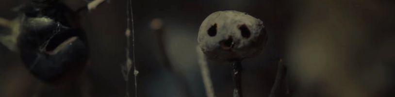 Dánský thriller Kaštánek se dočká seriálové adaptace z dílny Netflixu